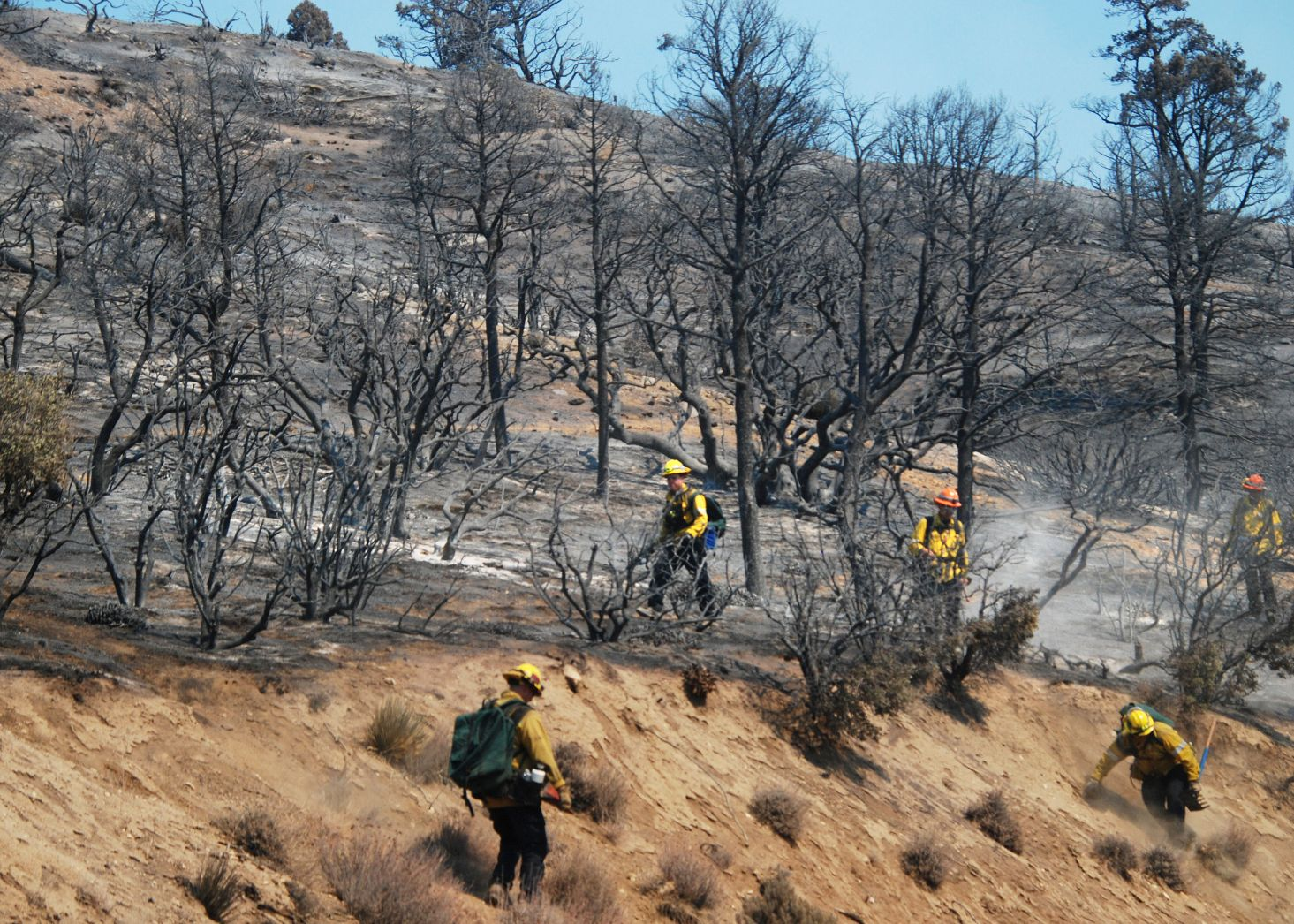 Bobcat fire is 50% contained and not growing much, either