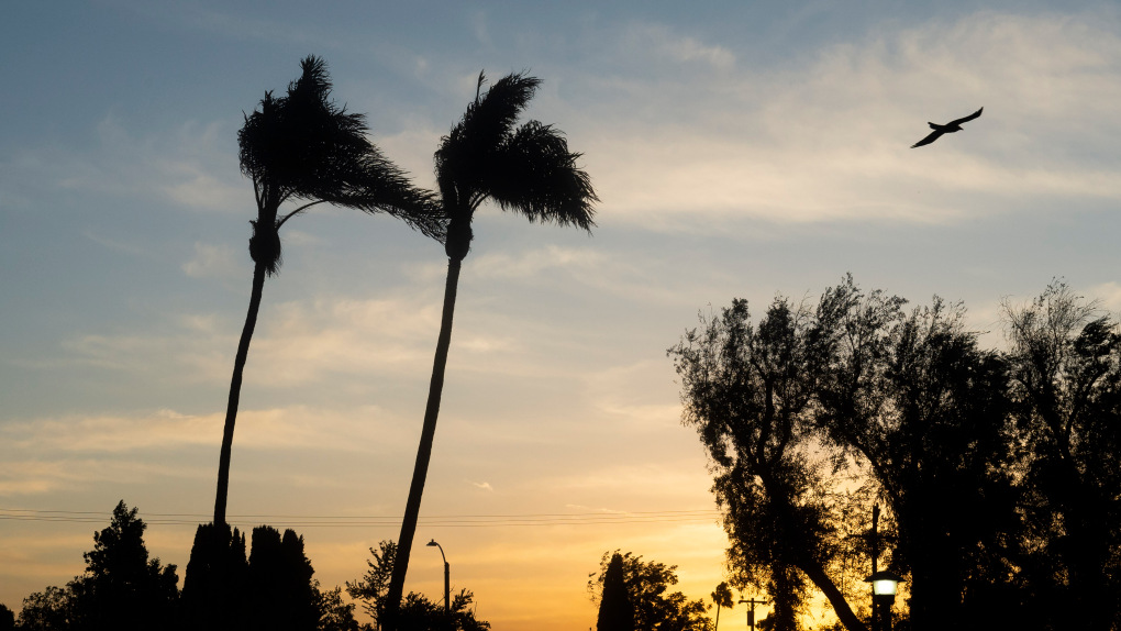 Thanksgiving winds end, sunshine ahead for weekend
