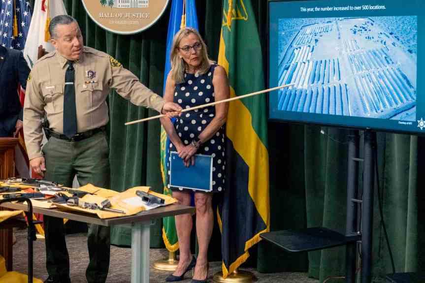 $1.2 billion in illegal marijuana seized from Antelope Valley farms, authorities say