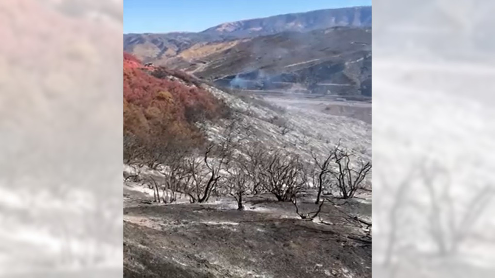 Most 5 Freeway lanes reopen after blaze consumes hundreds of acres near Castaic